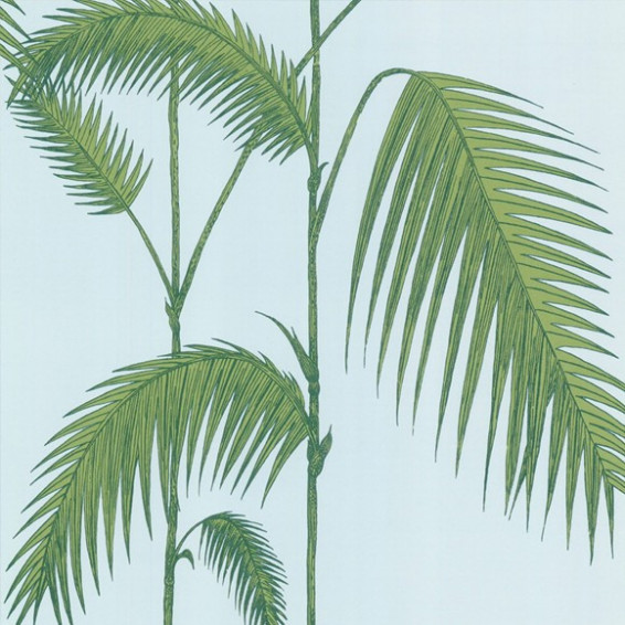 Papier peint Palm leaves