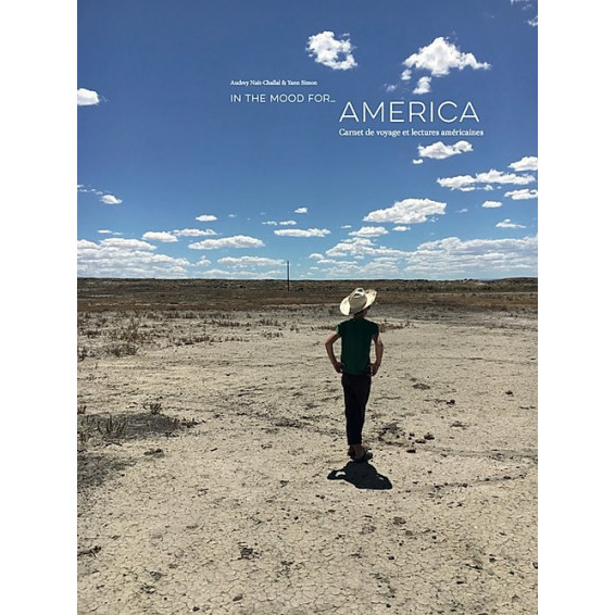 In the mood for... America