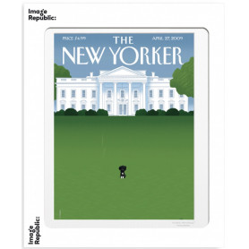 Affiche 40x50 The New Yorker - Chien
